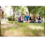 Napco Loc-Down Classroom Solution