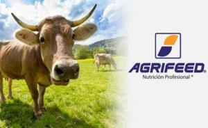 AGRIFEED authorizing access with FingerTec