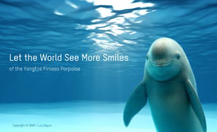 Hikvision helps WWF and OPF protecting endangered Yangtze Finless Porpoise