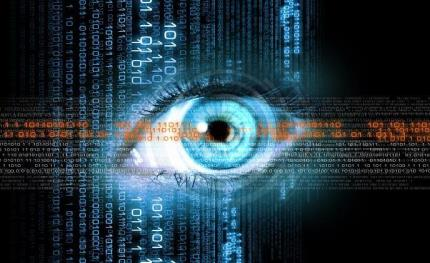 Iris ID iris recognition protects U.S. Private Vaults