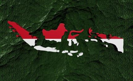 What's driving Indonesia security growth?