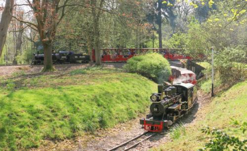 Wisenet video surveillance system protects Audley End Miniature Railway