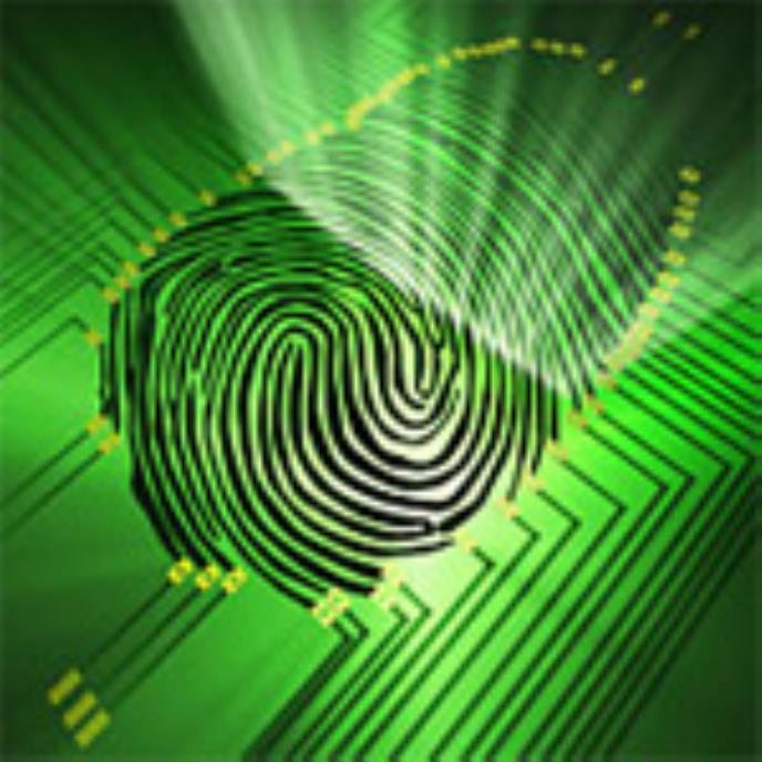 Crossing Borders with Biometrics and RFID