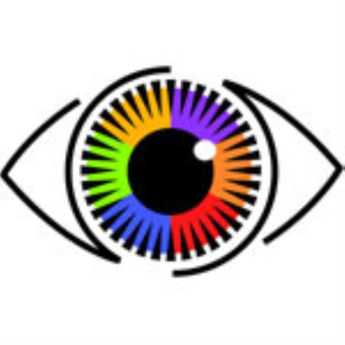 Challenges in Choosing Surveillance Cameras