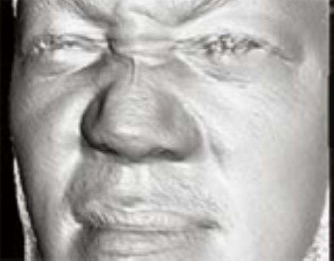 Biometrics Nose Your Identity