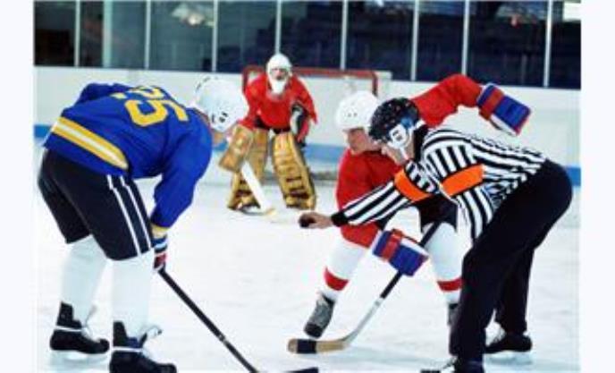 Avigilon HD Surveillance System Creates Safe Spectator Experience for Ice Hockey World Championship