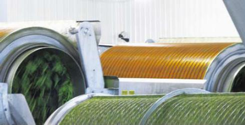 Chase Farms integrated Milestone video surveillance with its bean production machinery.