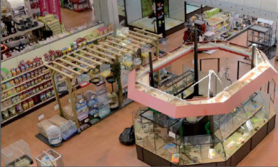 Honeywell protects French retailer Jardiland with intruder and access control system