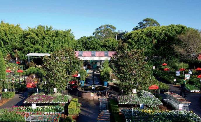 Australian garden store secured by March Networks