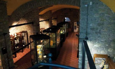Italian ceramics museum oversees artifacts with Axis cost-effective solution