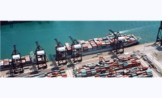 Integrating Equipment and People for Seaports