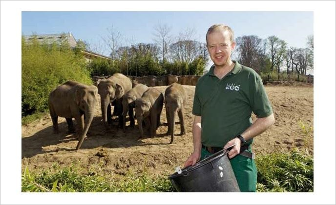 Axis cameras capture ground-breaking elephant sleep study at Dublin Zoo