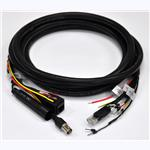 Explosion-Proof Camera Cable Assemblies