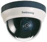 SK-N490 1.3 Megapixel Network Dome camera