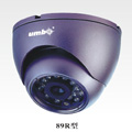 Color IR Vandal-proof  Dome Camera