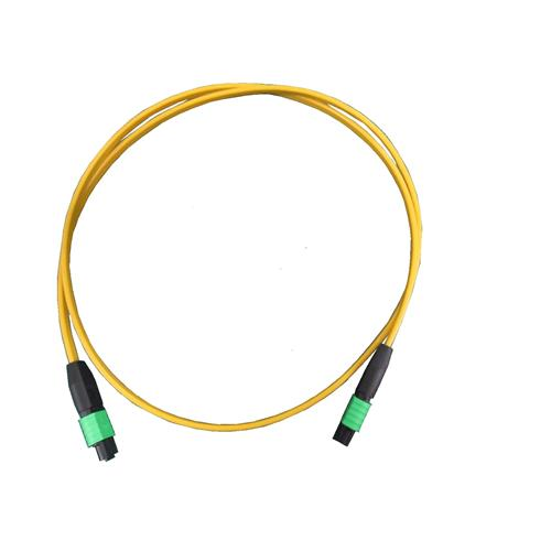 MTP/MPO Array Cable   #FPCCFFB