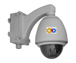 MPEG4 IP Speed Dome Camera (30 X Zoom)