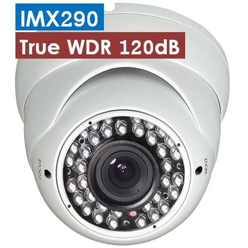 H.264 WDR STARVIS IP CAMERA