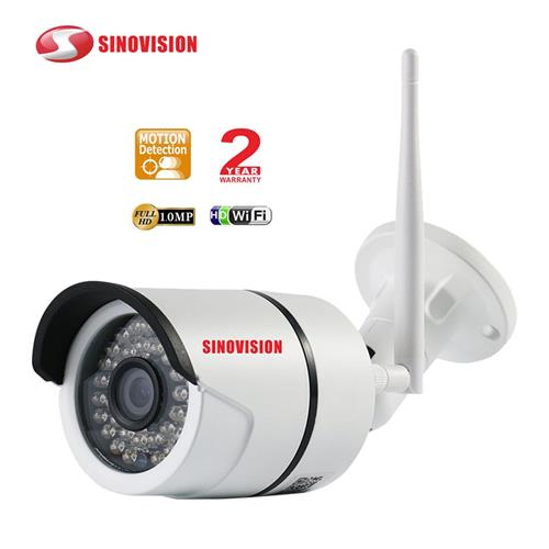 Factory suplier wholesale Hot-selling 1080P  2 in1 IP Camera suppport SD card