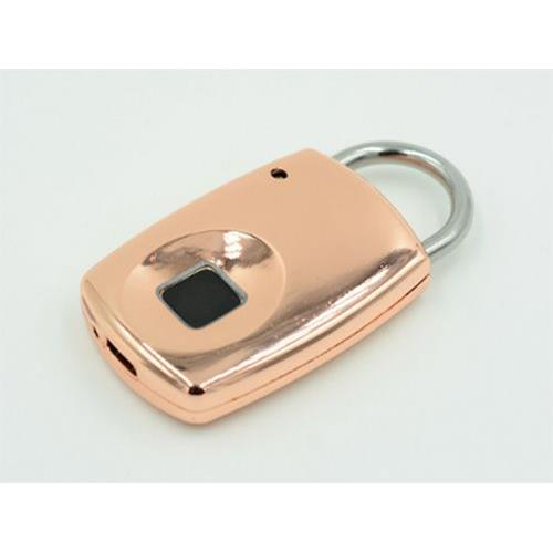fingerprint lock ZKF-001