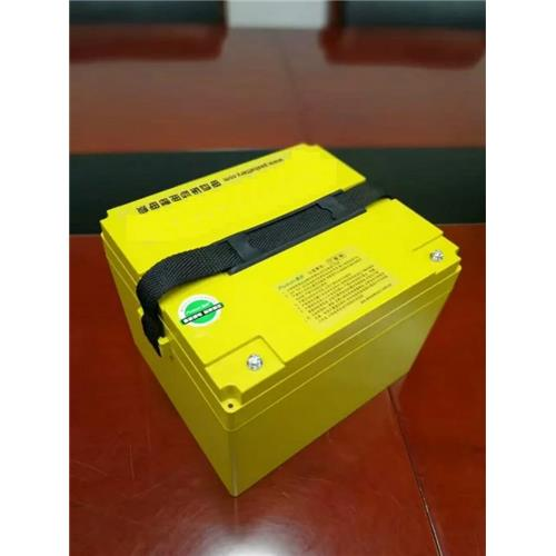 Perfect Replacement Battery 48V 30Ah for Lead-Acid Battery