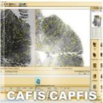 3M Cogent CAFIS Automated Palmprint/Fingerprint Identification System