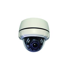 Altasec NCD2112 2MP Full HD Indoor Dome PoE Network Camera