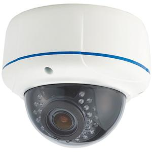 Network IR Dome Camera ND22