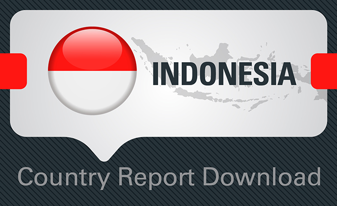 Indonesia Smartening up Cities with a Growing ICT Support