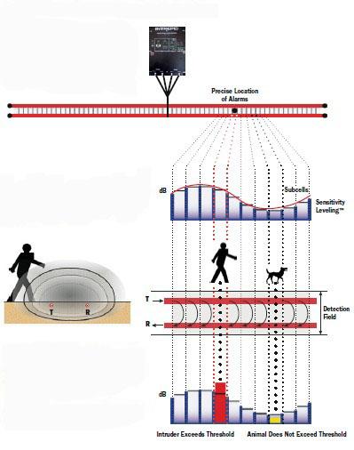 H Field Sensors Strong Resistance Against Environmental Factors