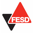 FESD Dubai Security Solution