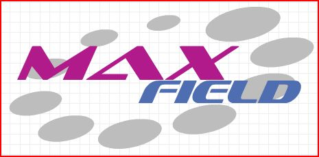 MAXField Technologies Global LTD